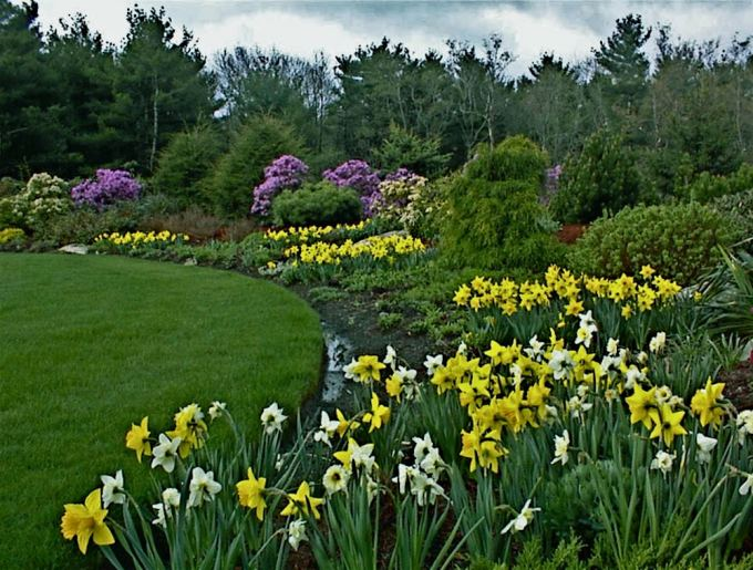 New England's Premier Landscape Design and Construction Firm, Rutland Nurseries