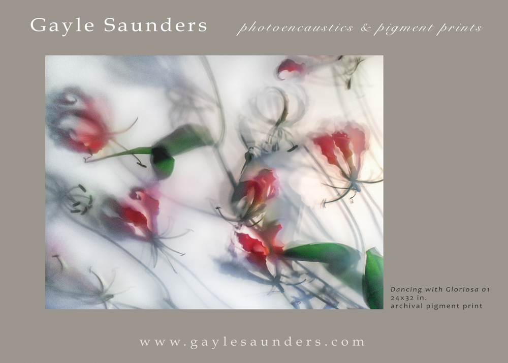 Gayle Saunders Dancing with Gloriosa 01