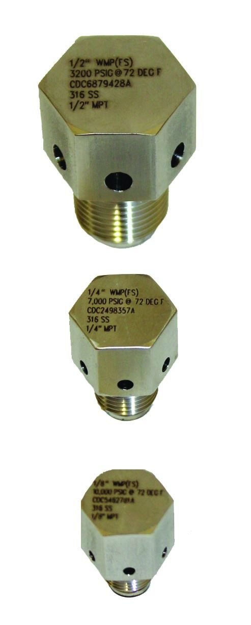 WMP™ Welded Muffled Plug Rupture Disc Assembly