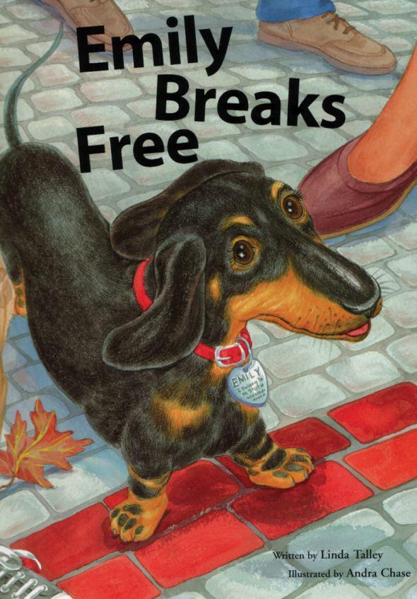 Emily Breaks Free_amazon