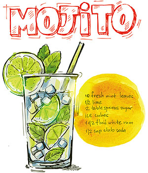 Make Authentic Mojito Mint Cocktail Drinks with Your Own Mojito Mint Plant