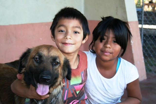 Kids at spay and neuter clinic Nicaragua