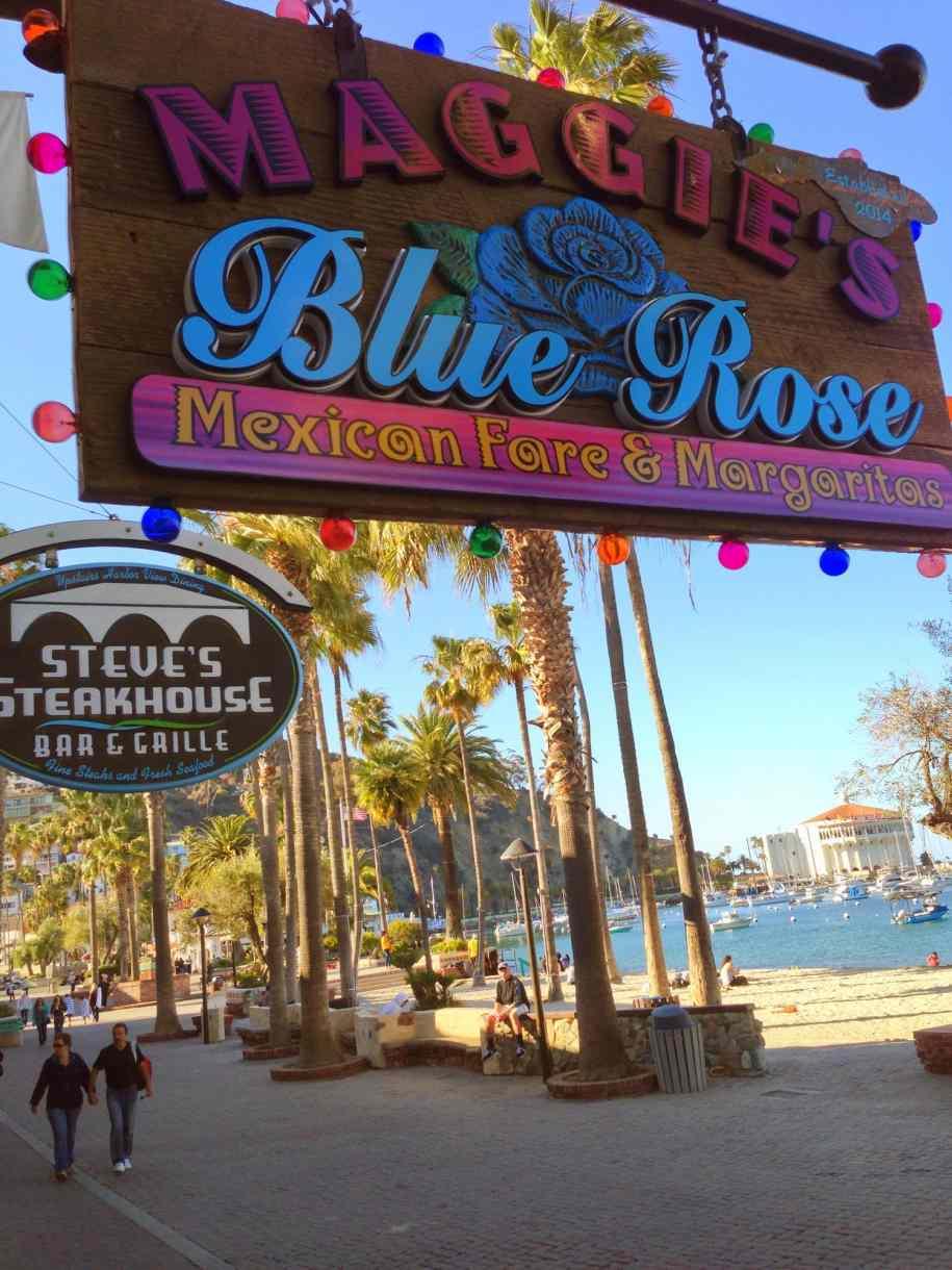 Maggie's Blue Rose overlooking scenic Avalon Bay on Santa Catalina Island.
