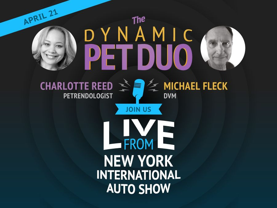 Dynamic Pet Duo - Social Post