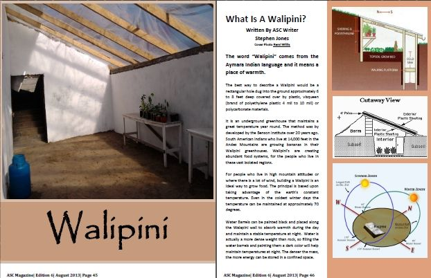 5 Reasons To Grow Your Food In A Walipini Venus Rizing