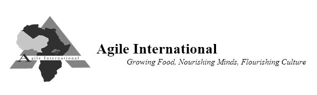 agile-international