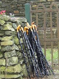 Irish_Blackthorn_Walking_Stick