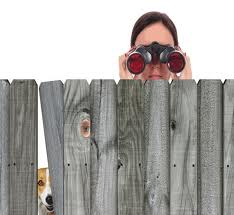 Wanna Be a Nosy Neighbour?
