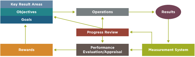 Figure 1 - The Management Systems Performance Management System