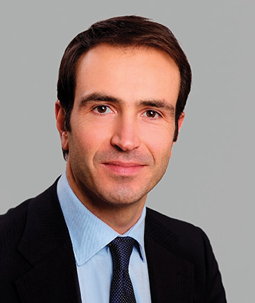 Jose Herrero, Navico Professional Divison