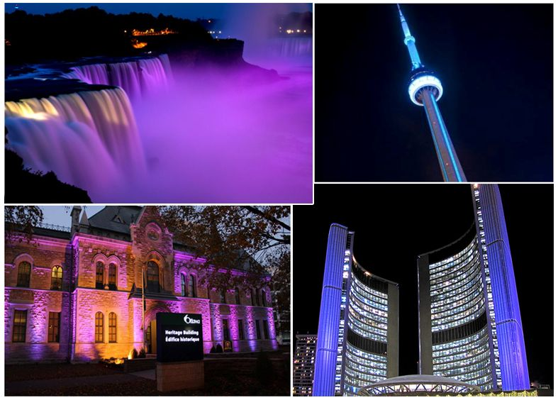 Niagara Falls; CN Tower; Ottawa City Hall Heritage Building;  Toronto City Hall