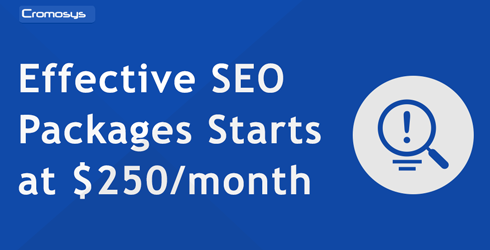 Effective SEO Packages