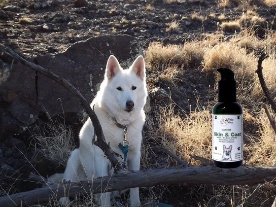 Whisky with Canine Skin and Coat