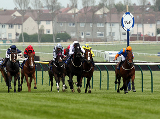 May double header at Ayr Racecourse