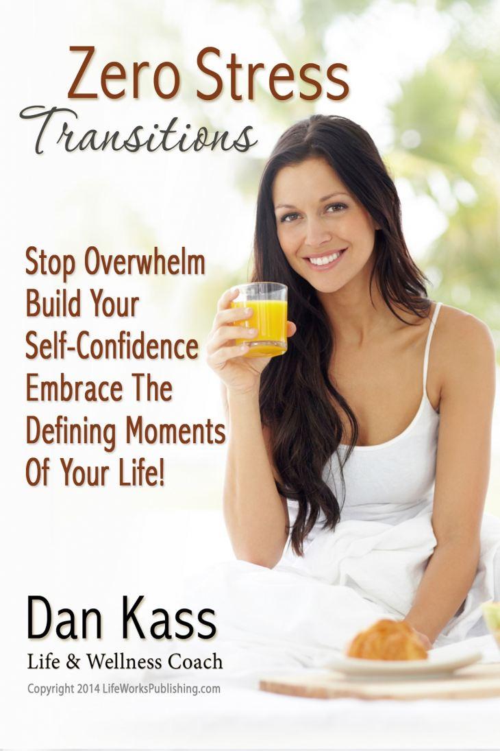 Zero Stress Transitions by Dan Kass