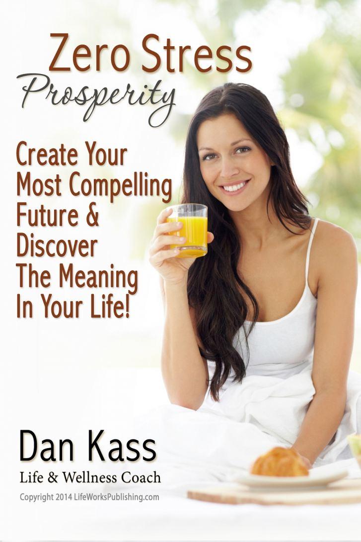 Zero Stress Prosperity by Dan Kass