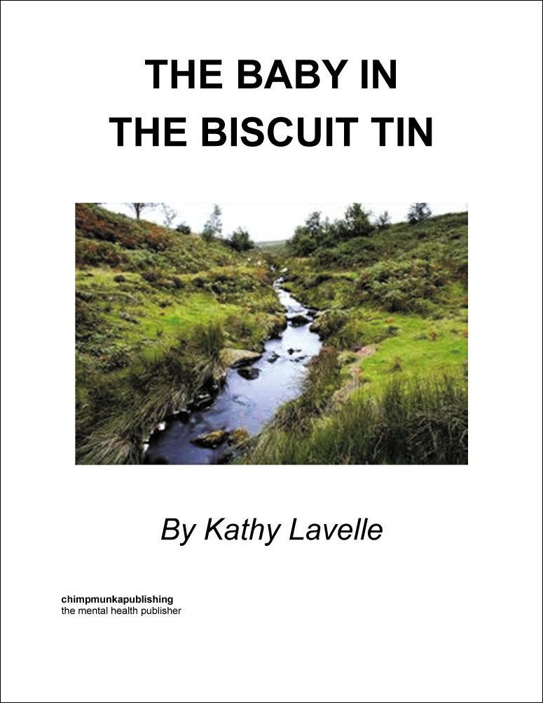 Baby In the Biscuit Tin - cover (with frame)