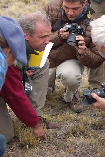 Pablo Borrelli-Patagonia Tour 2