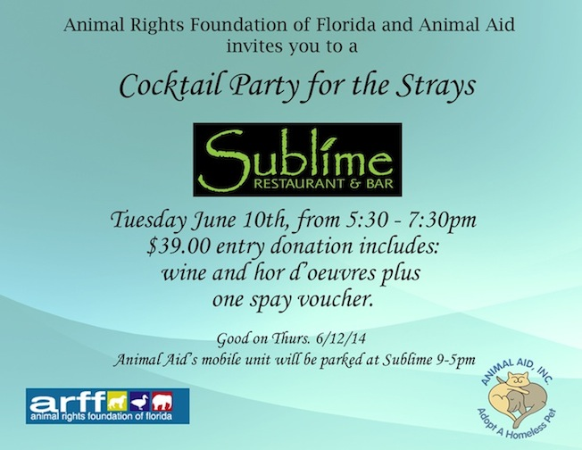 Cocktail Party for the Strays Invitation