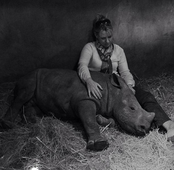Little G the orphaned baby rhino
