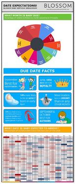 Baby Due Date Infographic