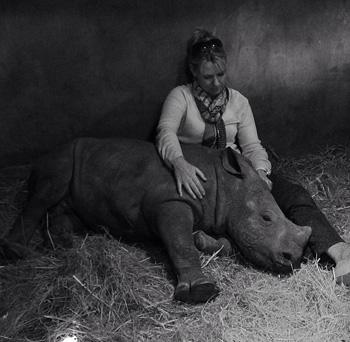 Orphaned Baby Rhino Gertjie
