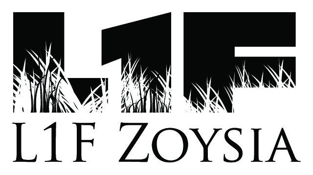 L1F Zoysia for lawns & golf