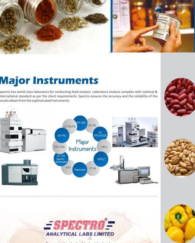 food brochure3