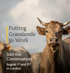 Grasslands to Work - Square