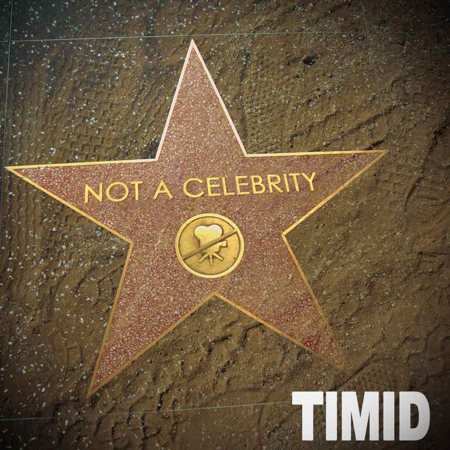 Timid-Not_A_Celebrity