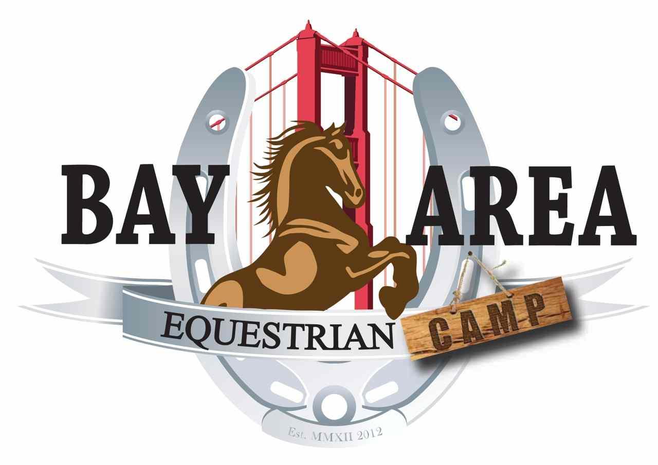 Bay Area Equestrian Club Vet Camp