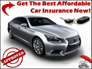 Best Affordable Auto Insurance For Young Adults With
