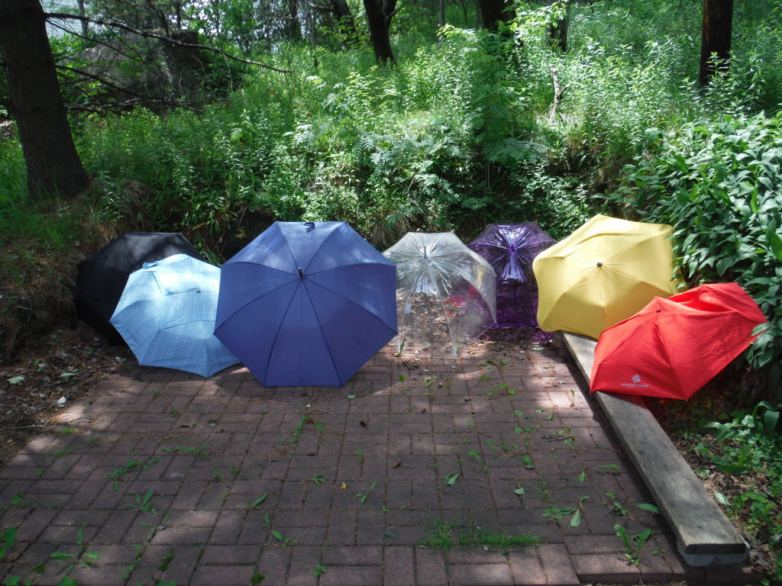 The seven umbrellas tested in this review.