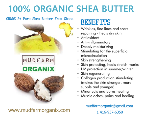 Where Exactly To Buy 100% Grade A Organic Shea Butter In ...