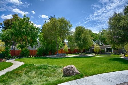 Park at Avellino in Mountain View