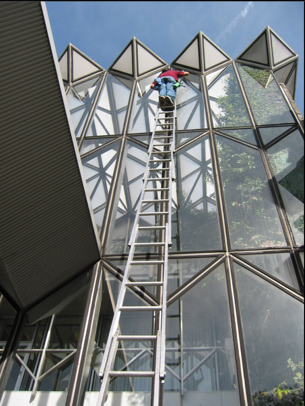 Ladder Window Cleaning
