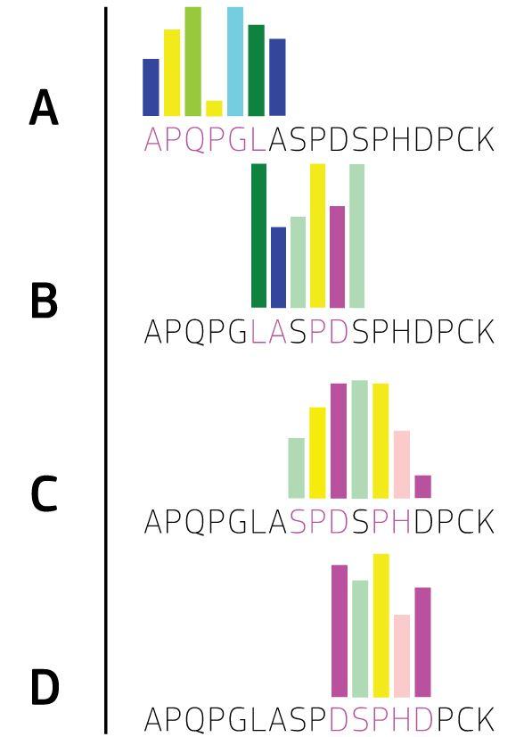Multi-epitope mapping using MVA