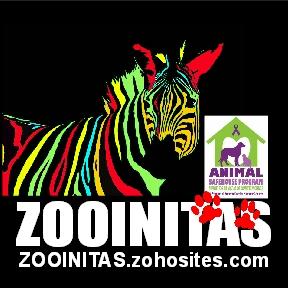 Zooinitas 2014