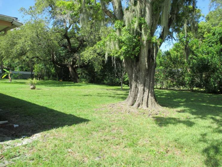 Over 1/4 acre lot!