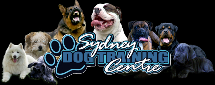 Sydney Dog Training Centre