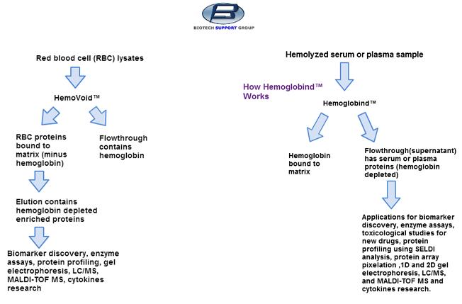 biotechsupportgroup_HemogloBindHemoVoidApplication