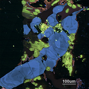 Image of an apatite/sodalite mineral taken with a TESCAN compact CL detector