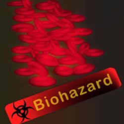 Body Art Bloodborne Pathogens Training Course