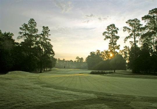 Longwood Golf Club-reduced