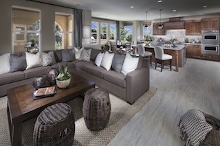 Fiore Kitchen and Living Area