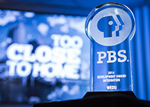 PBS Integrated Station Development Award