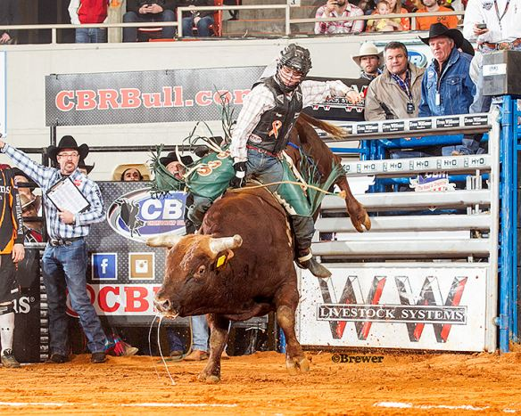 Bull Rider Wins $107,000 on locally owned bucking bull, Ragin JT