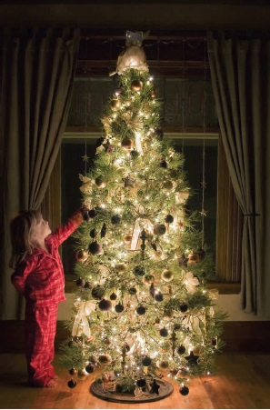 CPSC strives to improve safety inspections on holiday lighting.