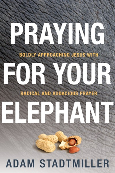 Adam Stadtmiller-Praying For Your Elephant Releases Oct. 1
