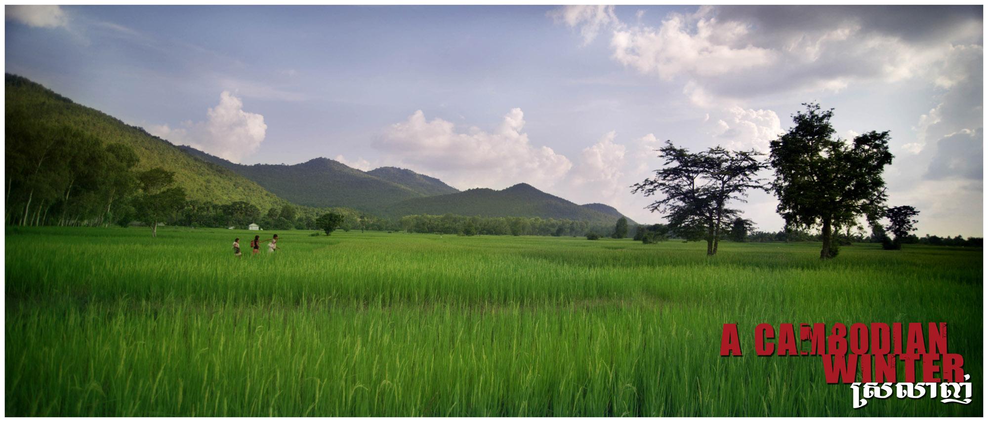 Running through green rice fields of Cambodia